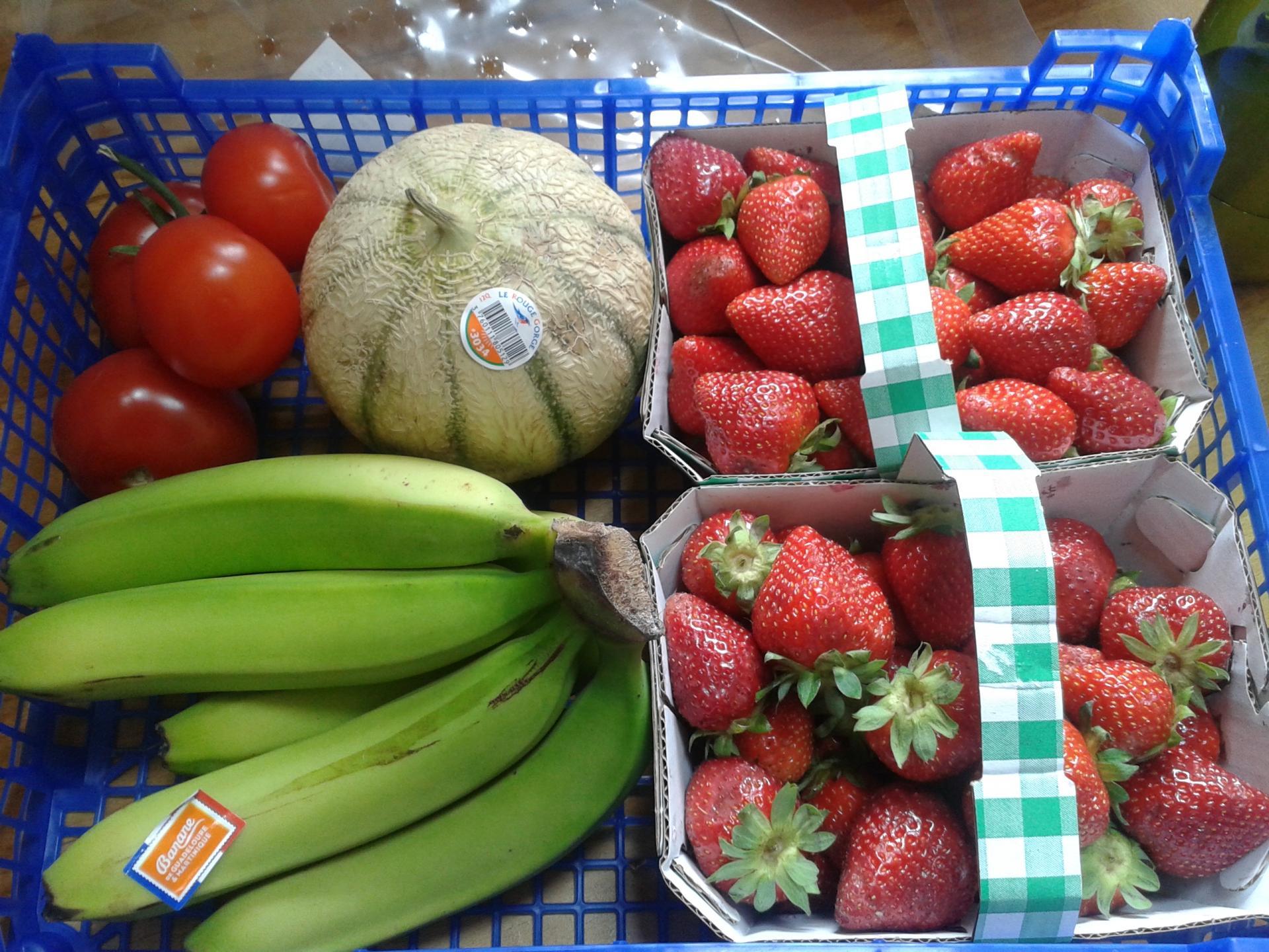 panier fruits et légumes, Nac Atlan Vet, Lauriane Devaux